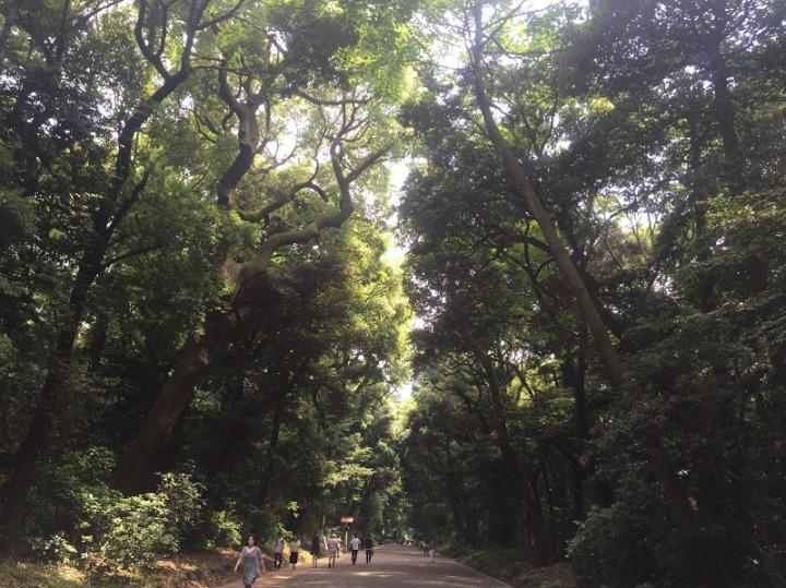 Tokyo Park 2
